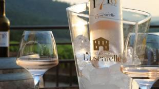 le vin rosé du var se déguste tout au long d'un repas